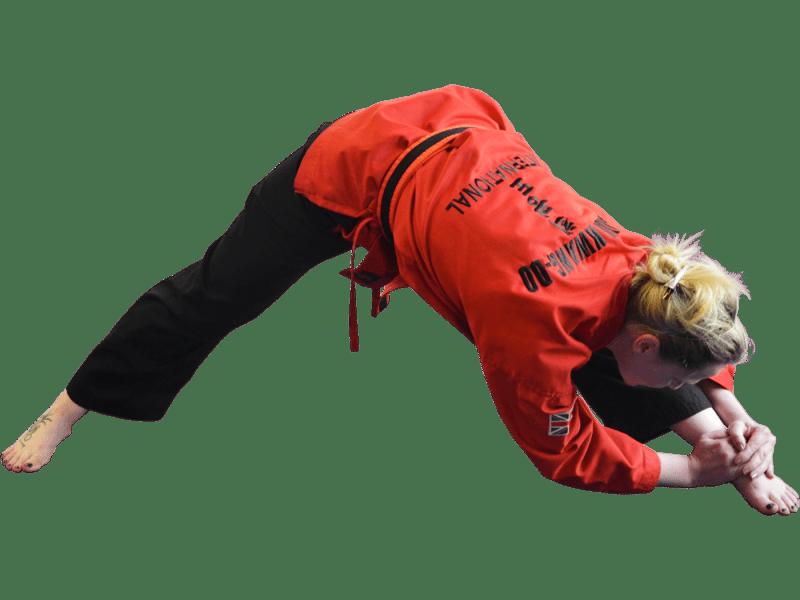 Adult Martial Art in Wembley